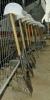 Grundsteinlegung-010018-elf-Spaten